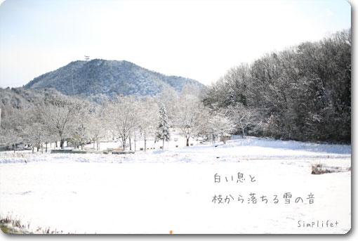 畜産センター雪景色