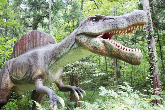 かつやまディノパーク 福井県立恐竜博物館