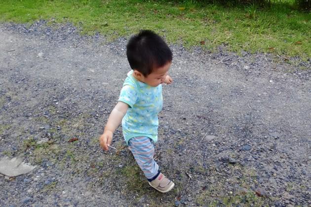 1歳 歩く