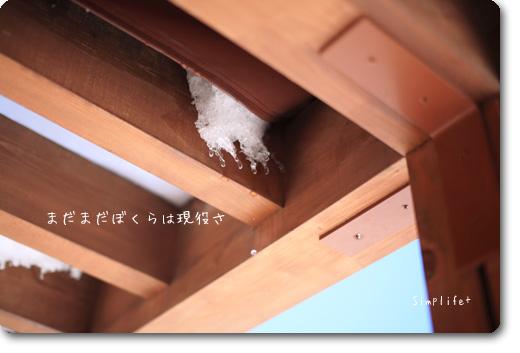 飛騨高山の雪