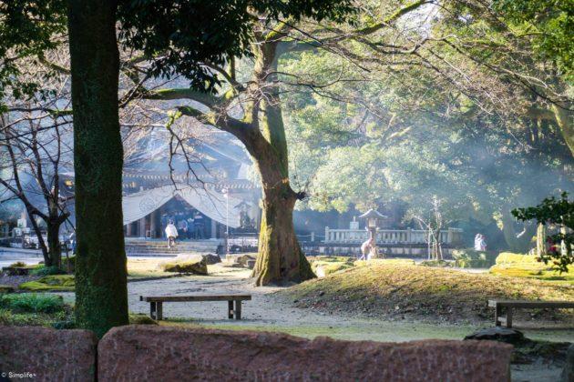 初詣 岐阜護国神社