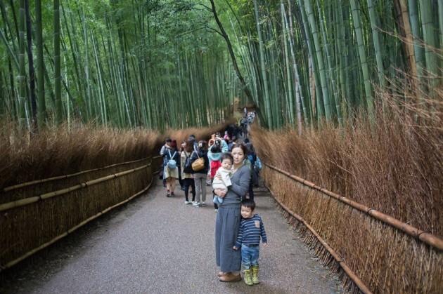 子連れ 京都 旅行