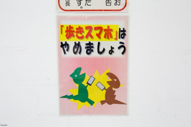 福井県立恐竜博物館 恐竜