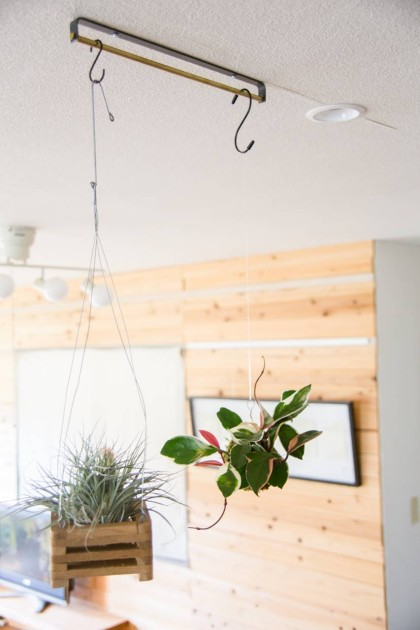 観葉植物 ハンギング 吊るす