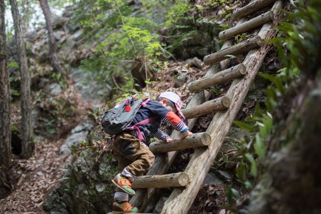 森林文化アカデミー 演習林