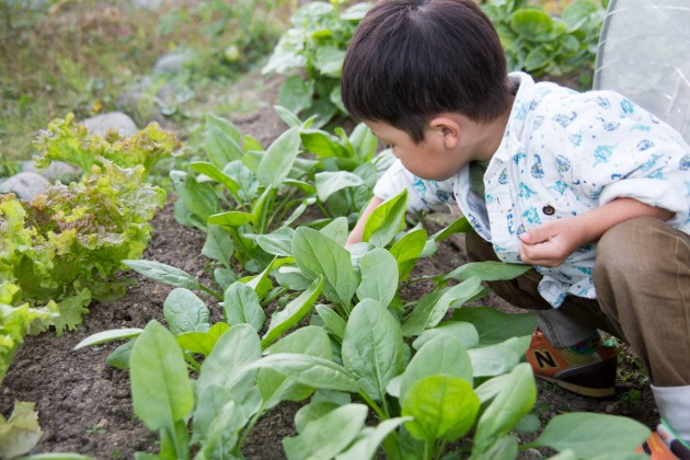 土育 農作業 子育て