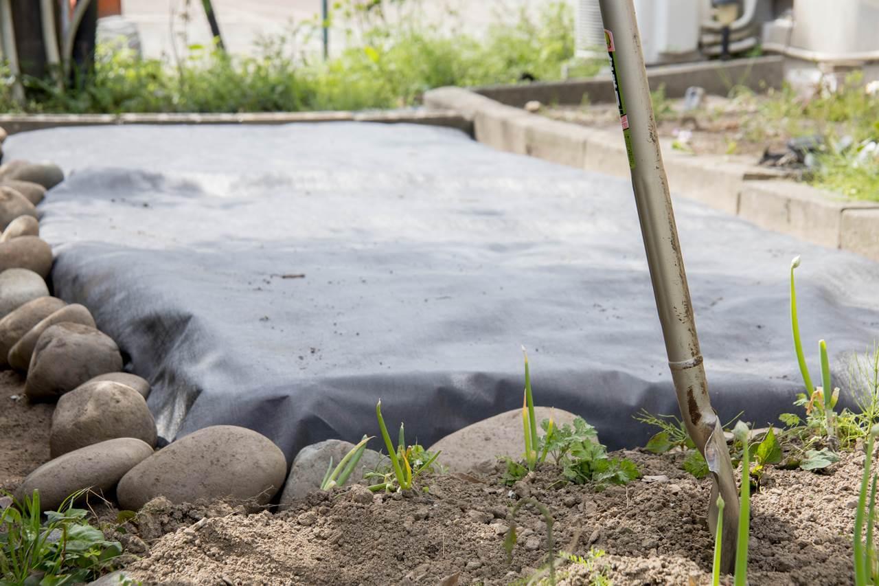 地下茎 ヤブガラシ ドクダミ よもぎ 防草シート 強力