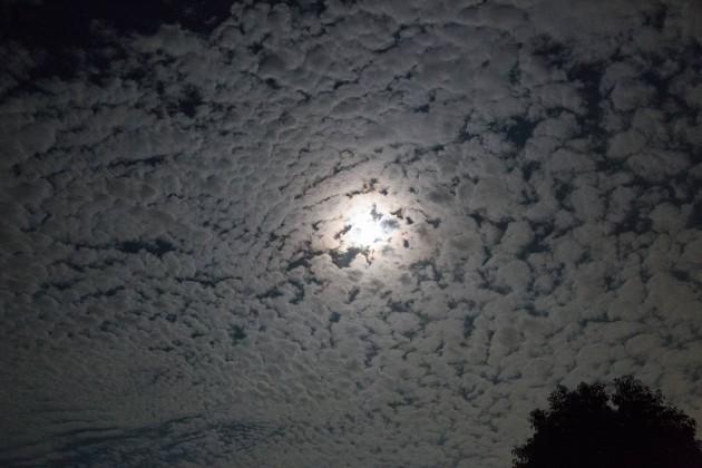 中秋の名月 月 撮影